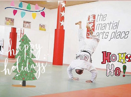 Merry Christmas from The Martial Arts Place!